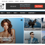 Newsmag – WordPress Theme